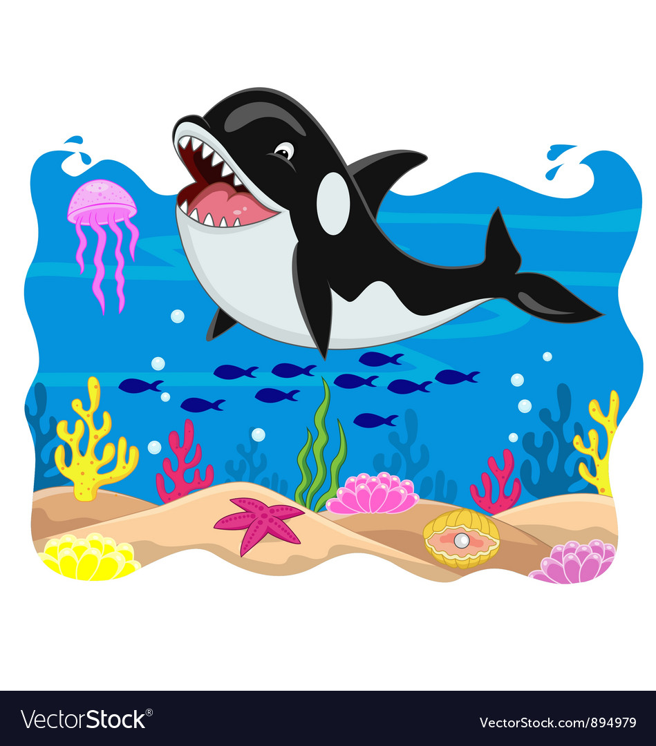 Killer whale cartoon vector | Price: 3 Credit (USD $3)