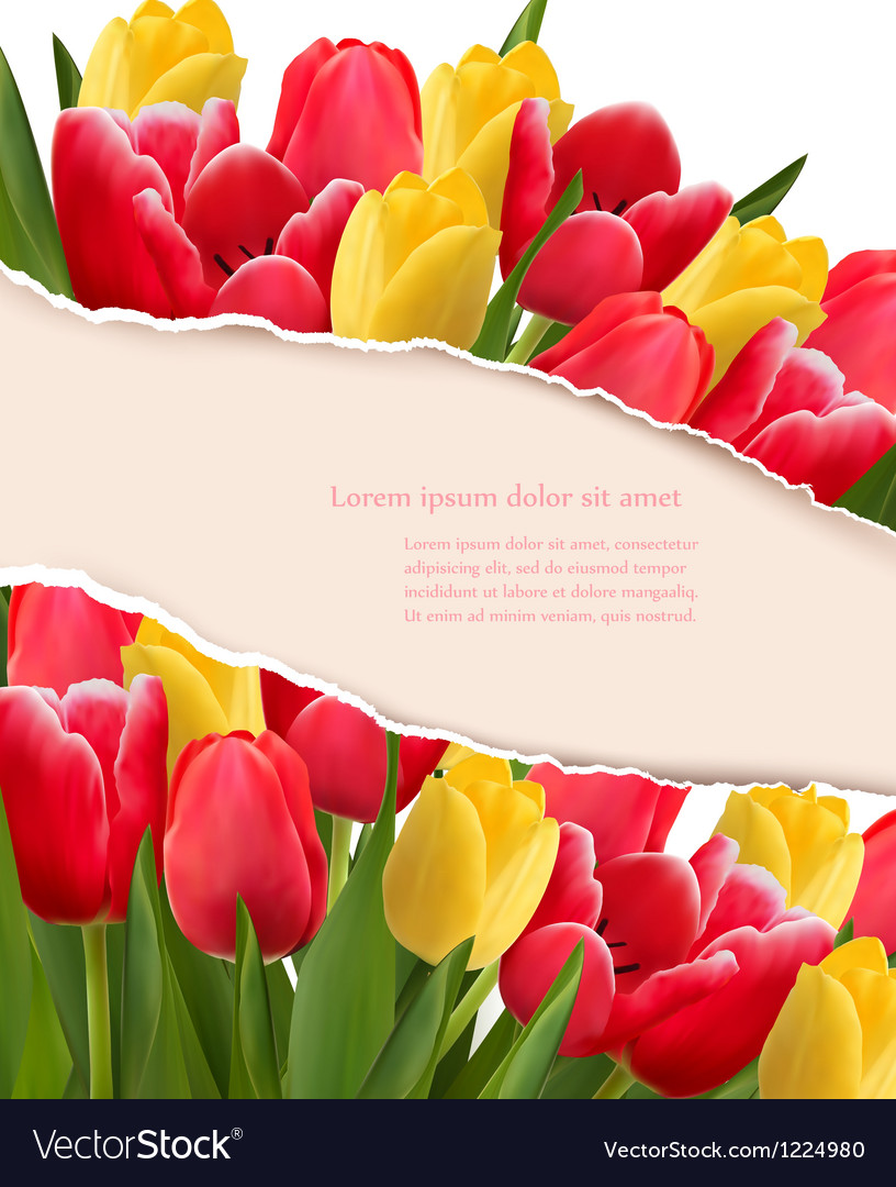 Holiday background with colorful flowers and vector | Price: 3 Credit (USD $3)