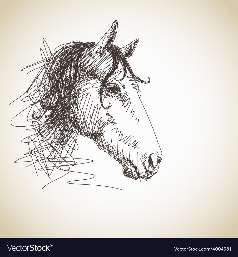 Horse portrait vector | Price: 1 Credit (USD $1)