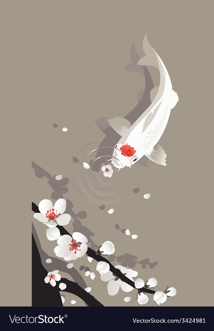 Koi carp vector | Price: 1 Credit (USD $1)