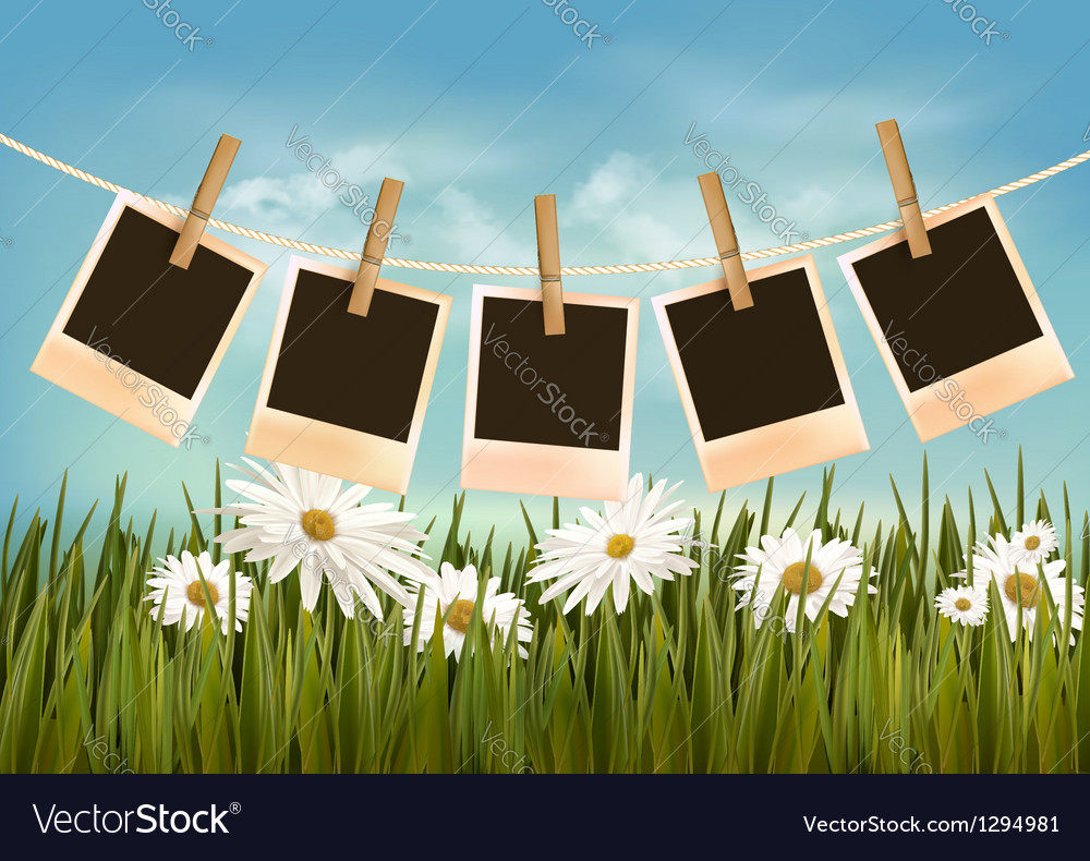 Photos hanging on a rope in front of a nature vector | Price: 1 Credit (USD $1)