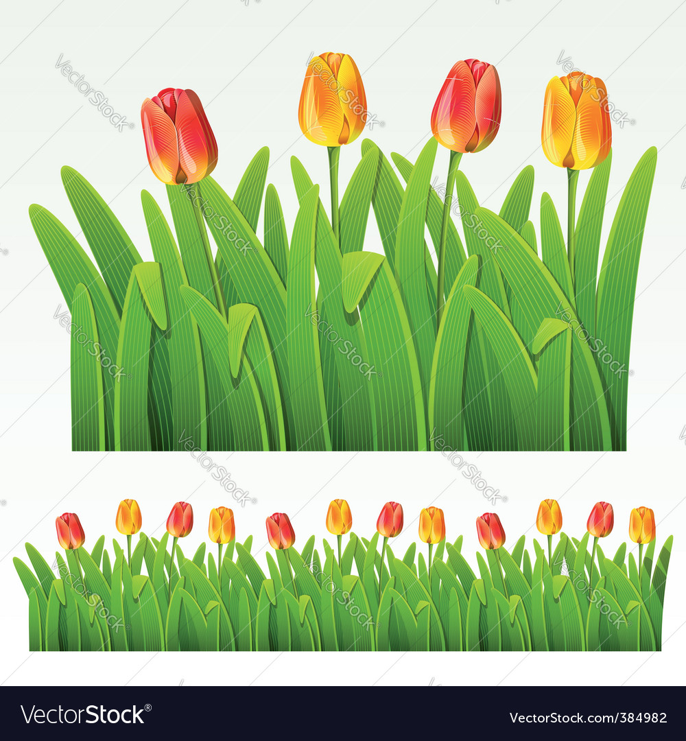 Herbaceous border vector | Price: 3 Credit (USD $3)