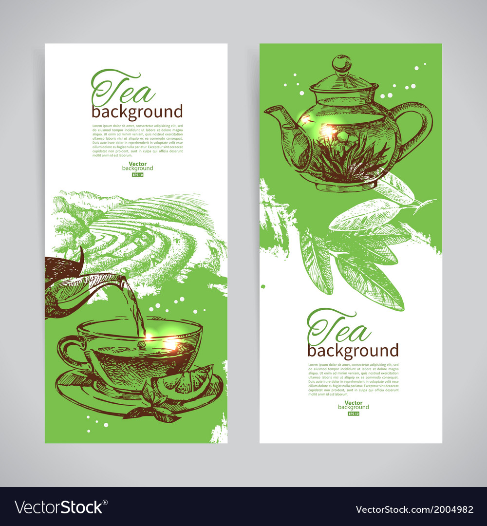 Set of tea vintage banners hand drawn sketch men vector | Price: 1 Credit (USD $1)