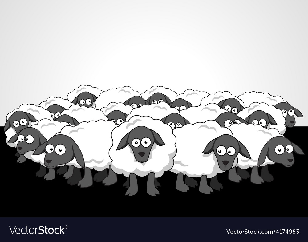 Flock of sheeps vector | Price: 1 Credit (USD $1)