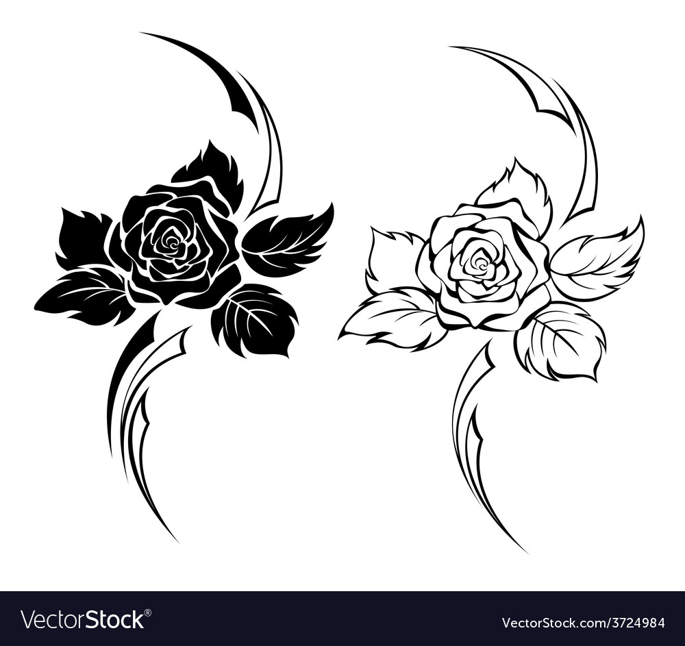 Two monochrome roses vector