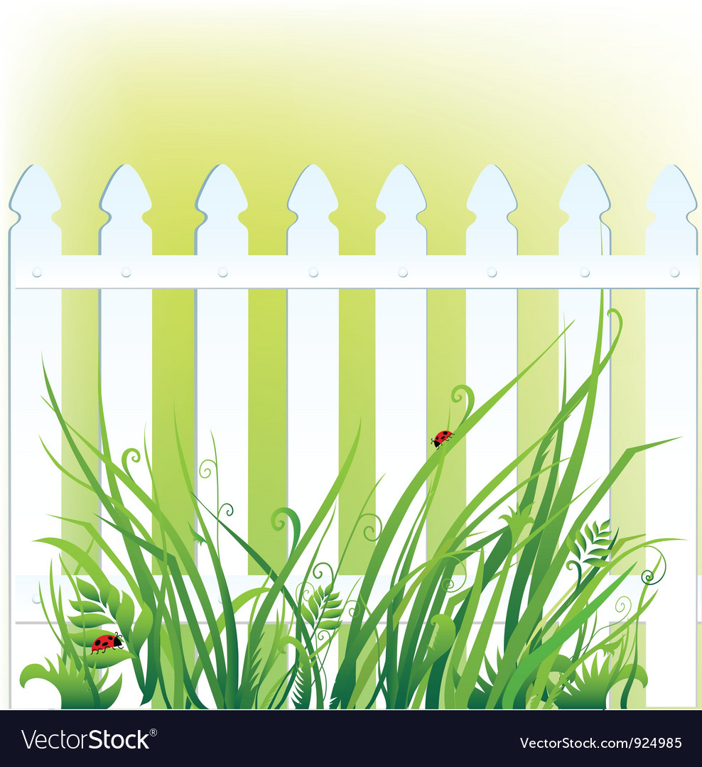 A fragment of white fence and grass vector | Price: 1 Credit (USD $1)