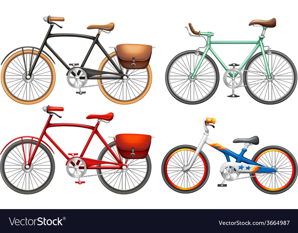 Sets of pedal bikes vector | Price: 1 Credit (USD $1)