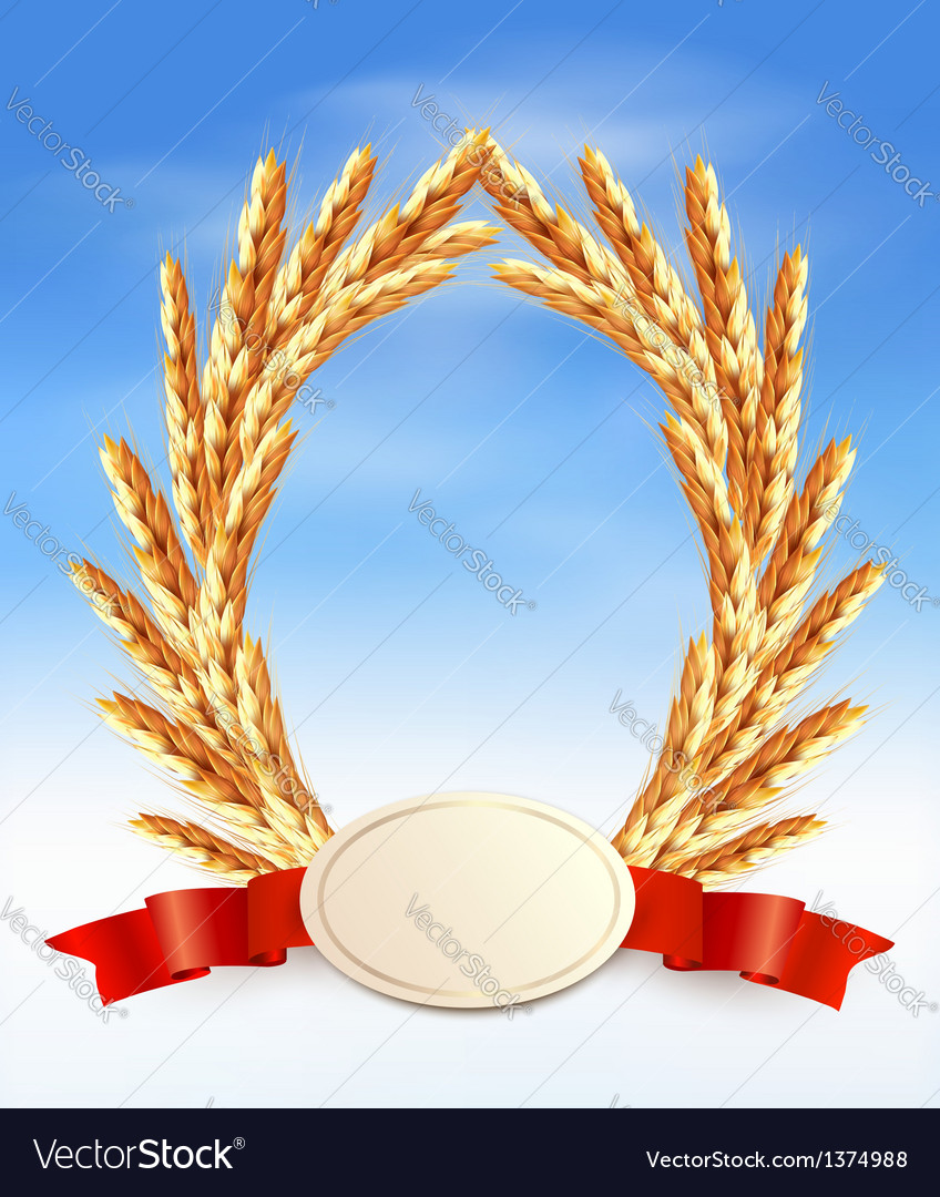Ripe yellow wheat ears with red ribbons vector | Price: 1 Credit (USD $1)