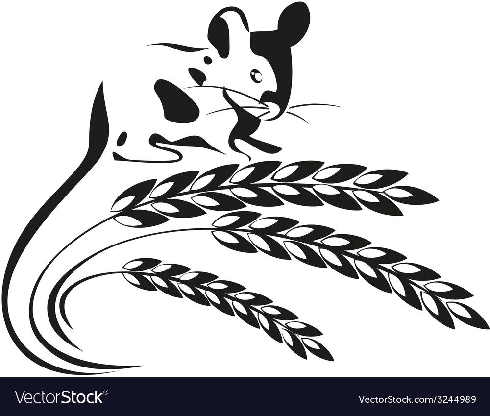 A mouse and wheat spikelets vector | Price: 1 Credit (USD $1)