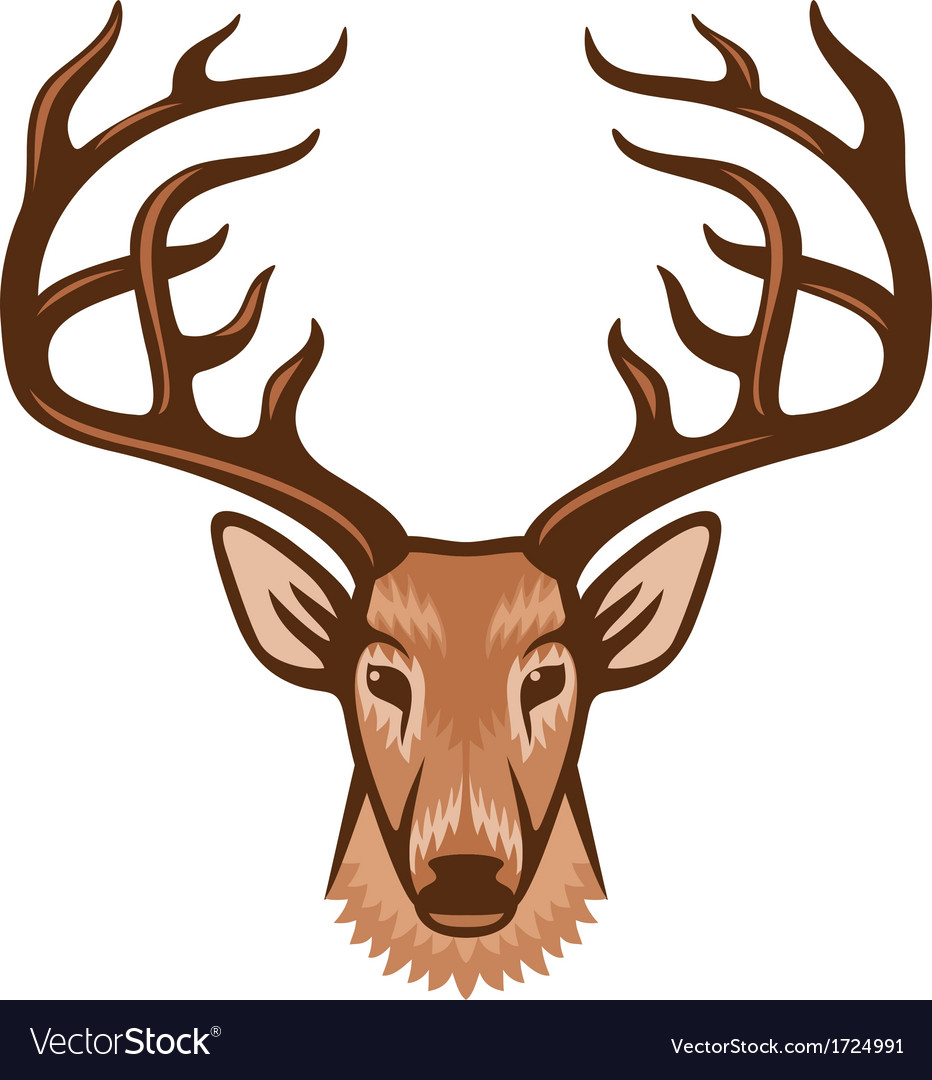 Deer head vector | Price: 1 Credit (USD $1)