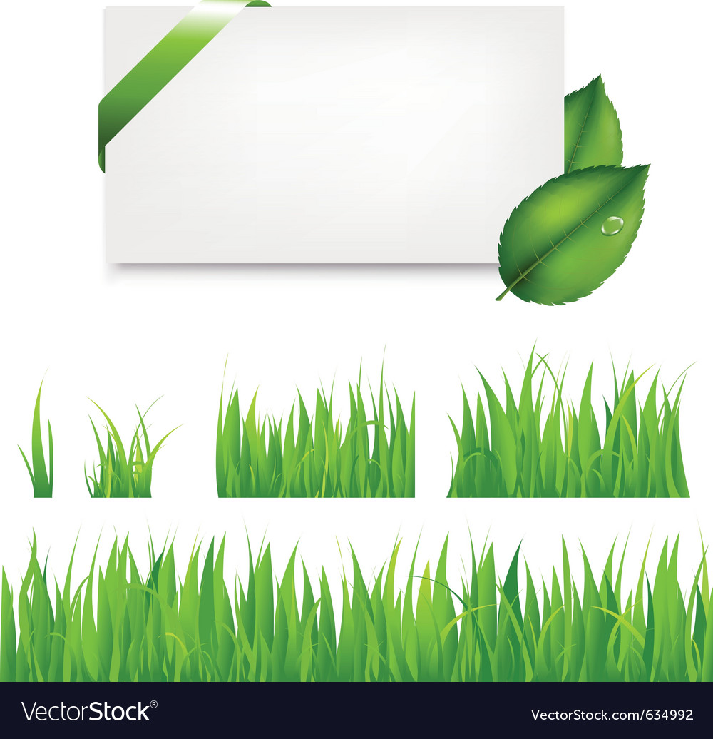 Green grass collection vector | Price: 1 Credit (USD $1)