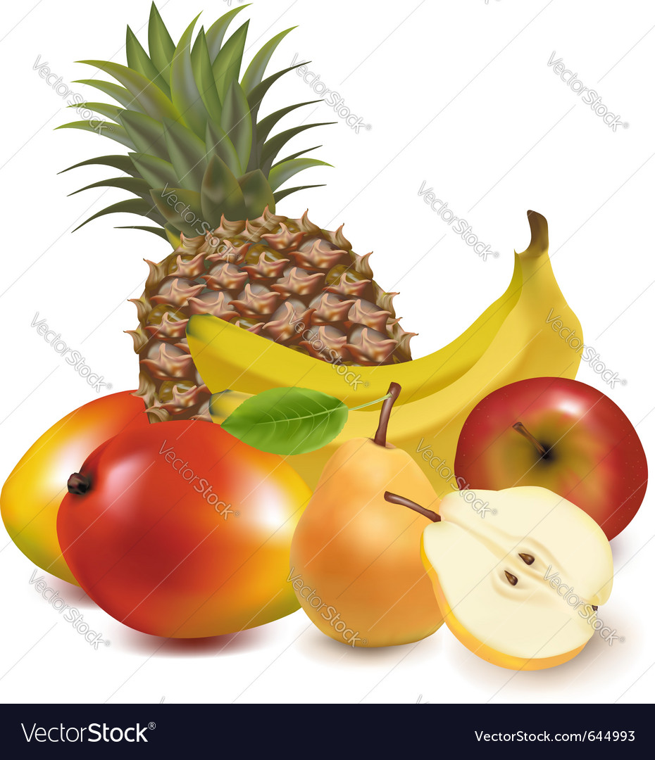 Tropical fruit vector | Price: 3 Credit (USD $3)