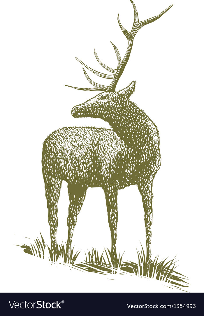 Woodcut elk vector | Price: 1 Credit (USD $1)