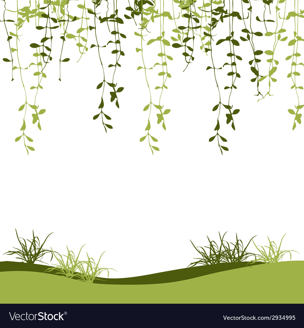 Green climber leaf and grass vector | Price: 1 Credit (USD $1)