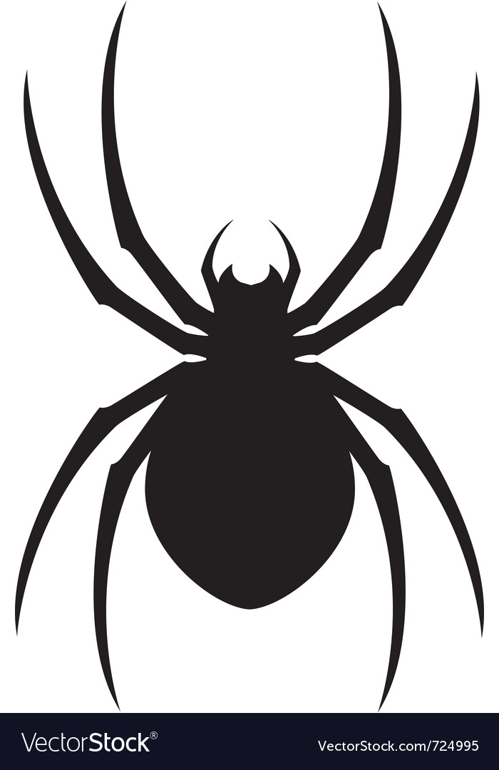 Spider design vector | Price: 1 Credit (USD $1)