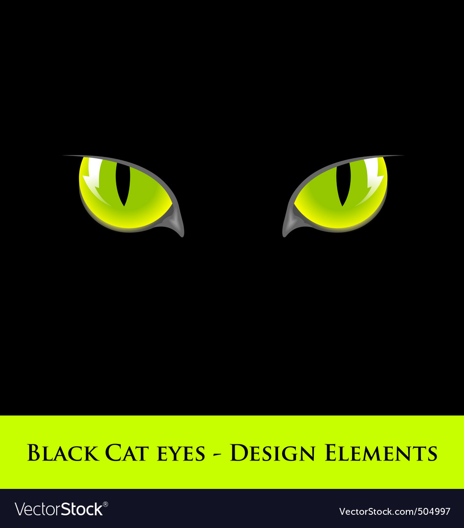 Black cat eyes vector | Price: 1 Credit (USD $1)