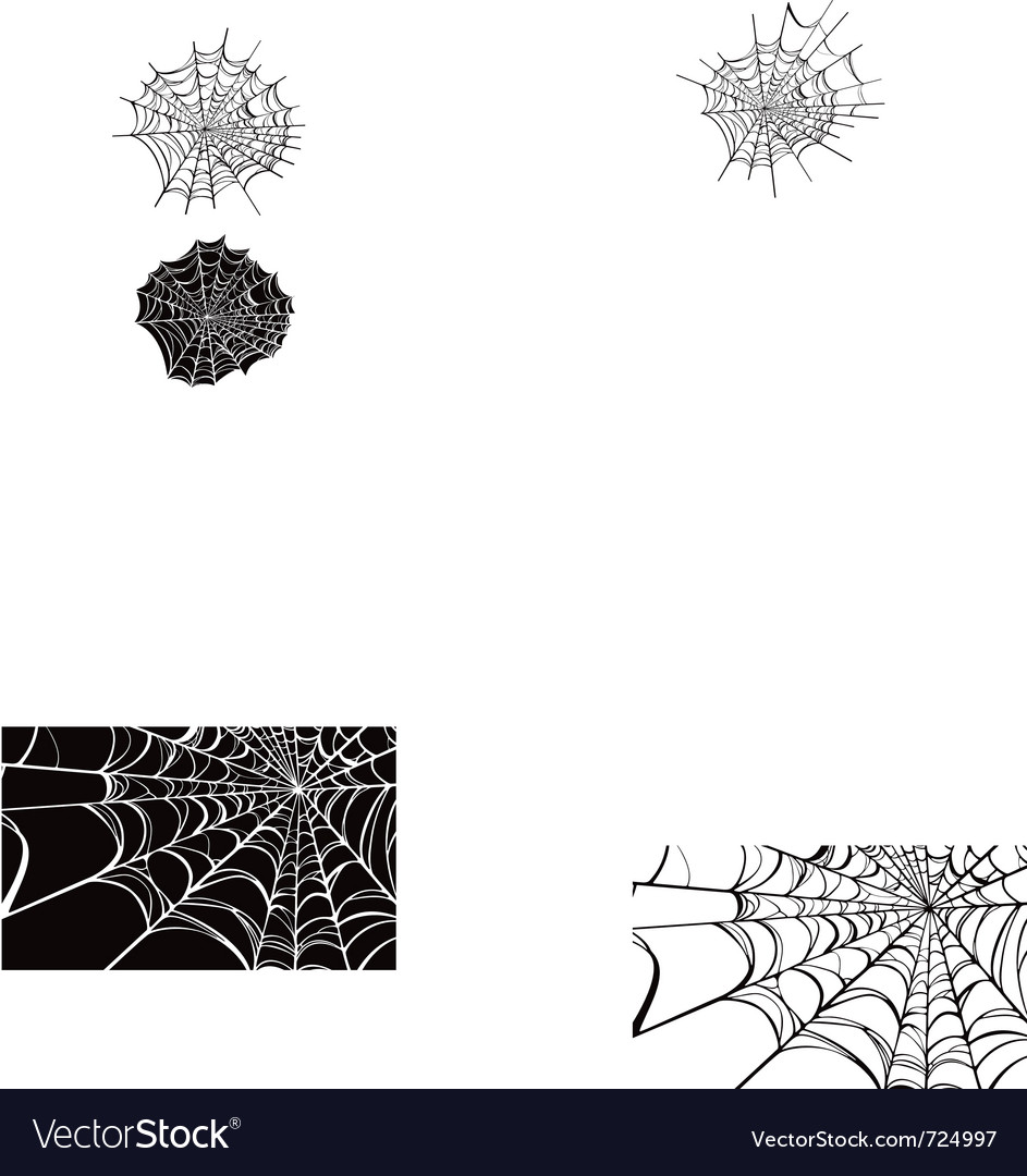Spider webs vector | Price: 1 Credit (USD $1)