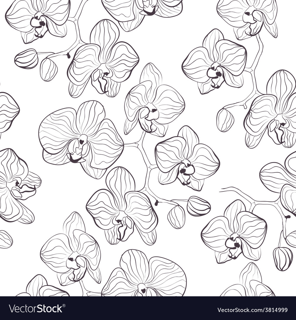 Seamless flower pattern with orchids vector | Price: 1 Credit (USD $1)