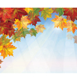 Autumnal leaves on blue sky background vector