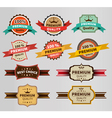 Vintage labels set discount and premium vector
