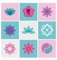 Logo spa flowers vector