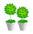 Icon plants vector