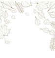 Autumn leaf skeletons template vector