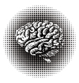 Halftone brain vector