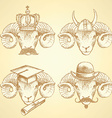 Sketch unusual rams set vector