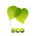 Eco logo green leaves vector