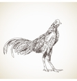 Sketch of asian rooster vector
