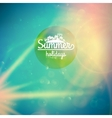Summer holidays sunset with defocused lights vector