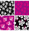 Floral background hibiscus vector
