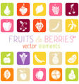 Set of flat square icons with fruits and berries vector