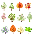 Set of different beautiful trees vector