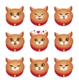 Cats emotions set vector