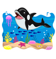 Killer whale cartoon vector
