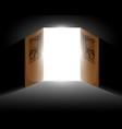 Light from the open door vector
