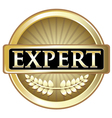 Expert gold label vector