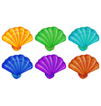 A group of shells vector