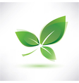 Green leaf eco concept vector