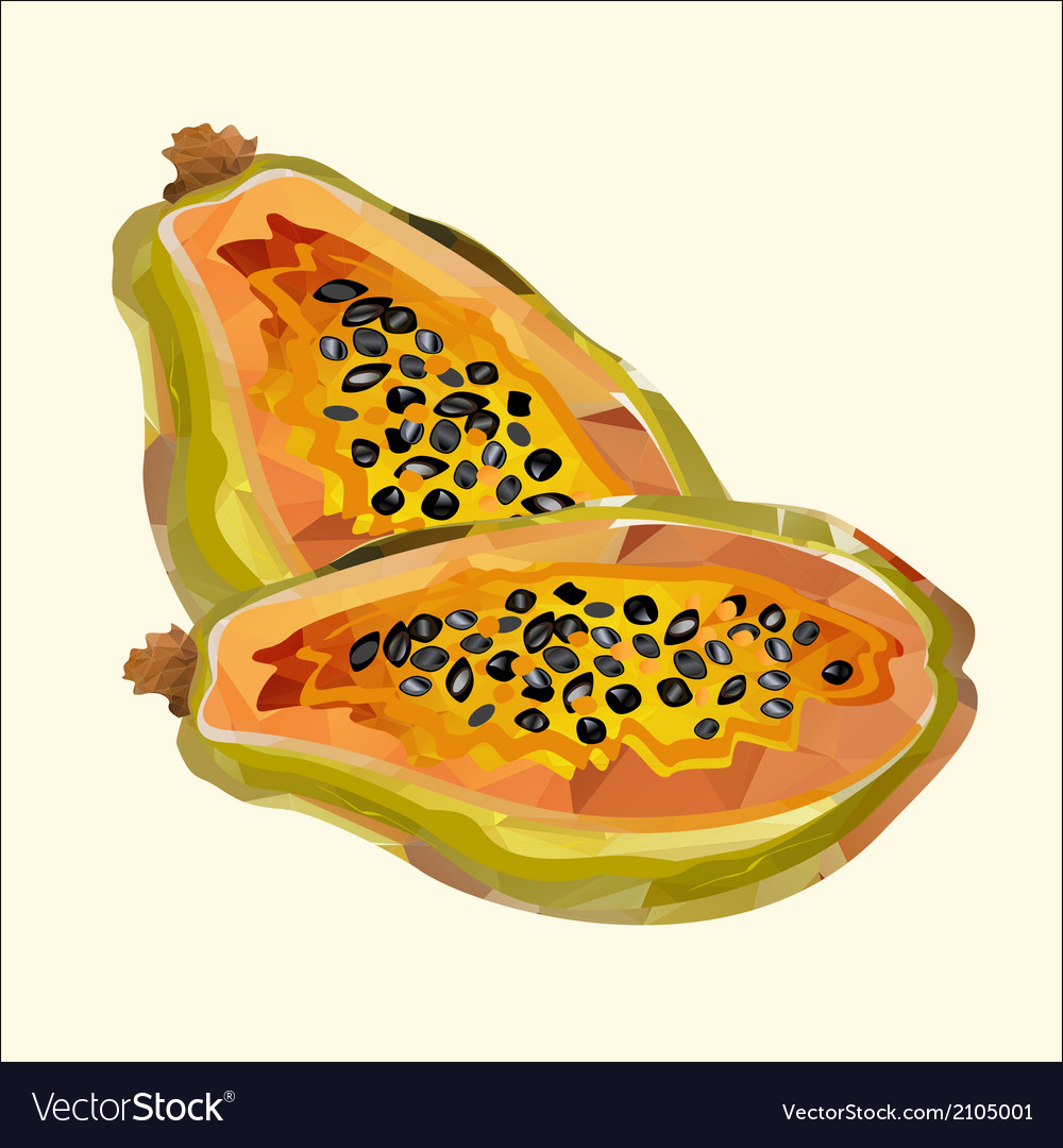 Papaya polygon vector | Price: 1 Credit (USD $1)