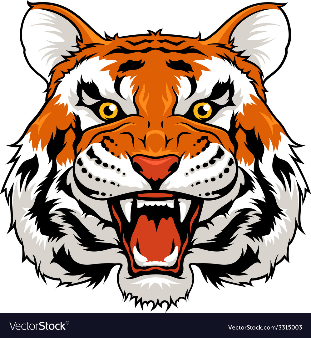 Angry tiger vector | Price: 3 Credit (USD $3)