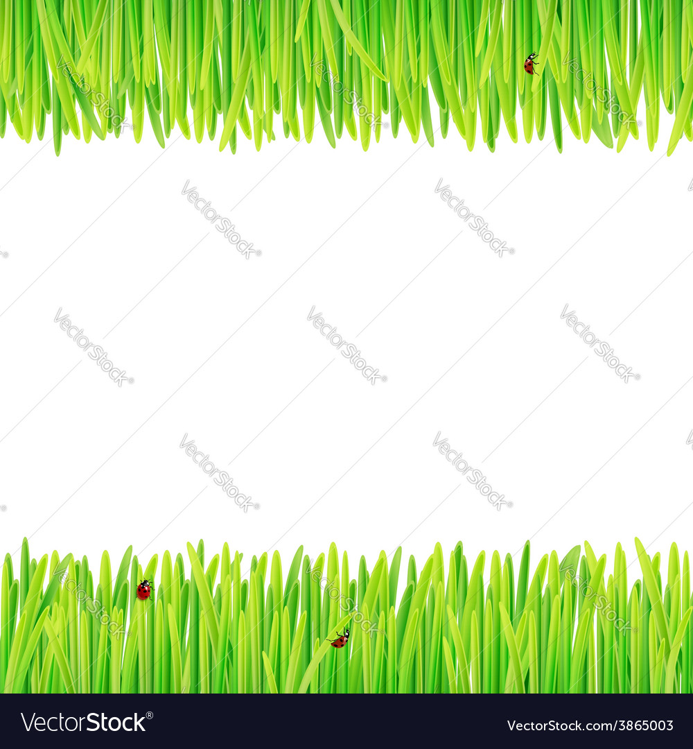 Background of spring grass vector | Price: 1 Credit (USD $1)