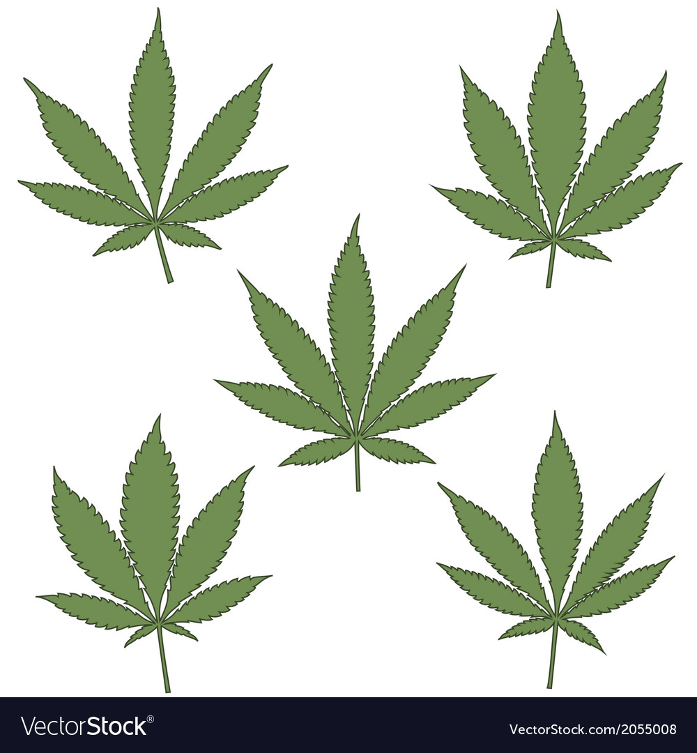 Marijuana leaf icons set vector | Price: 1 Credit (USD $1)