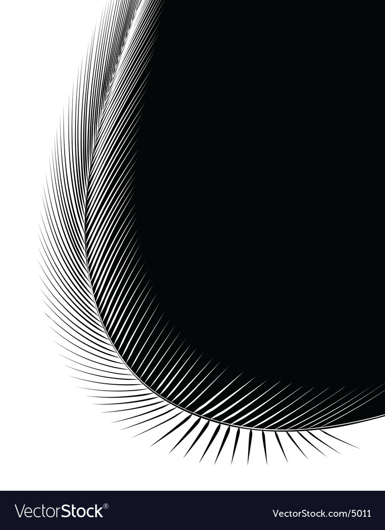 Bent feather vector | Price: 1 Credit (USD $1)
