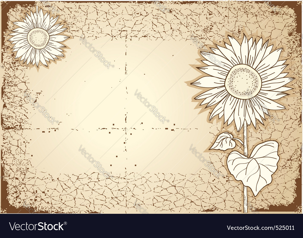 Vintage sunflower vector | Price: 1 Credit (USD $1)