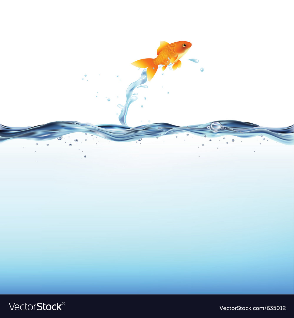 Goldfish water vector | Price: 1 Credit (USD $1)