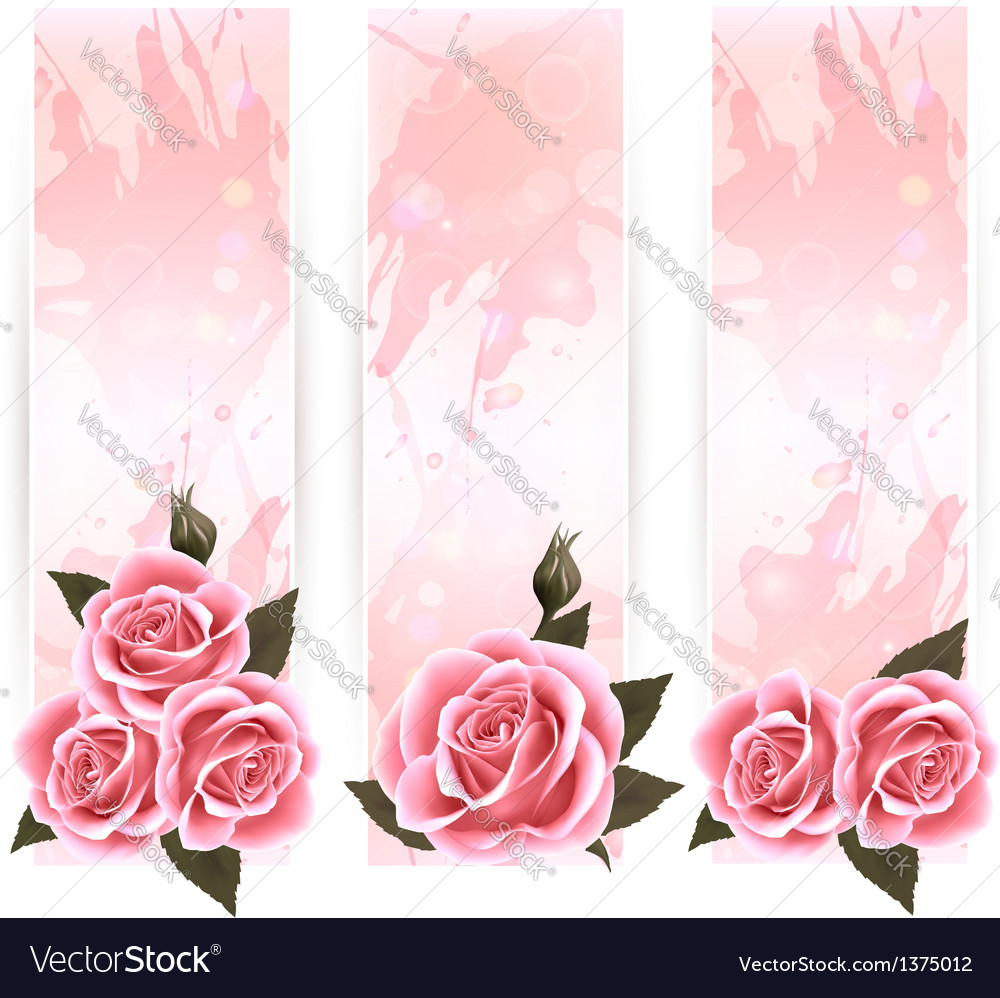 Holiday banners with pink beautiful roses vector | Price: 3 Credit (USD $3)