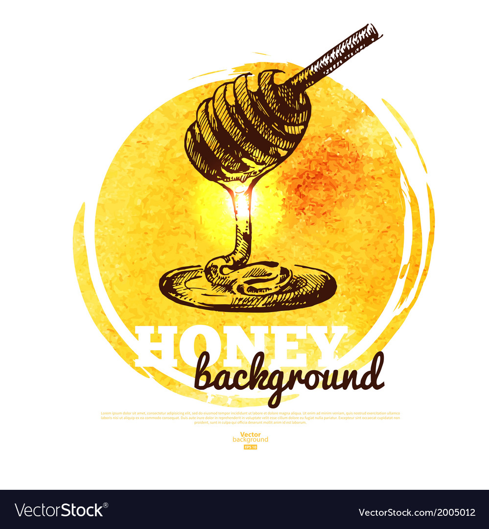 Honey banner with hand drawn sketch and watercolor vector | Price: 1 Credit (USD $1)